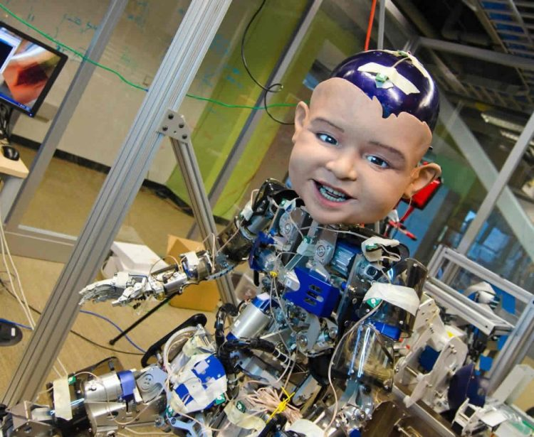 Photo of Diego the toddler like robot.