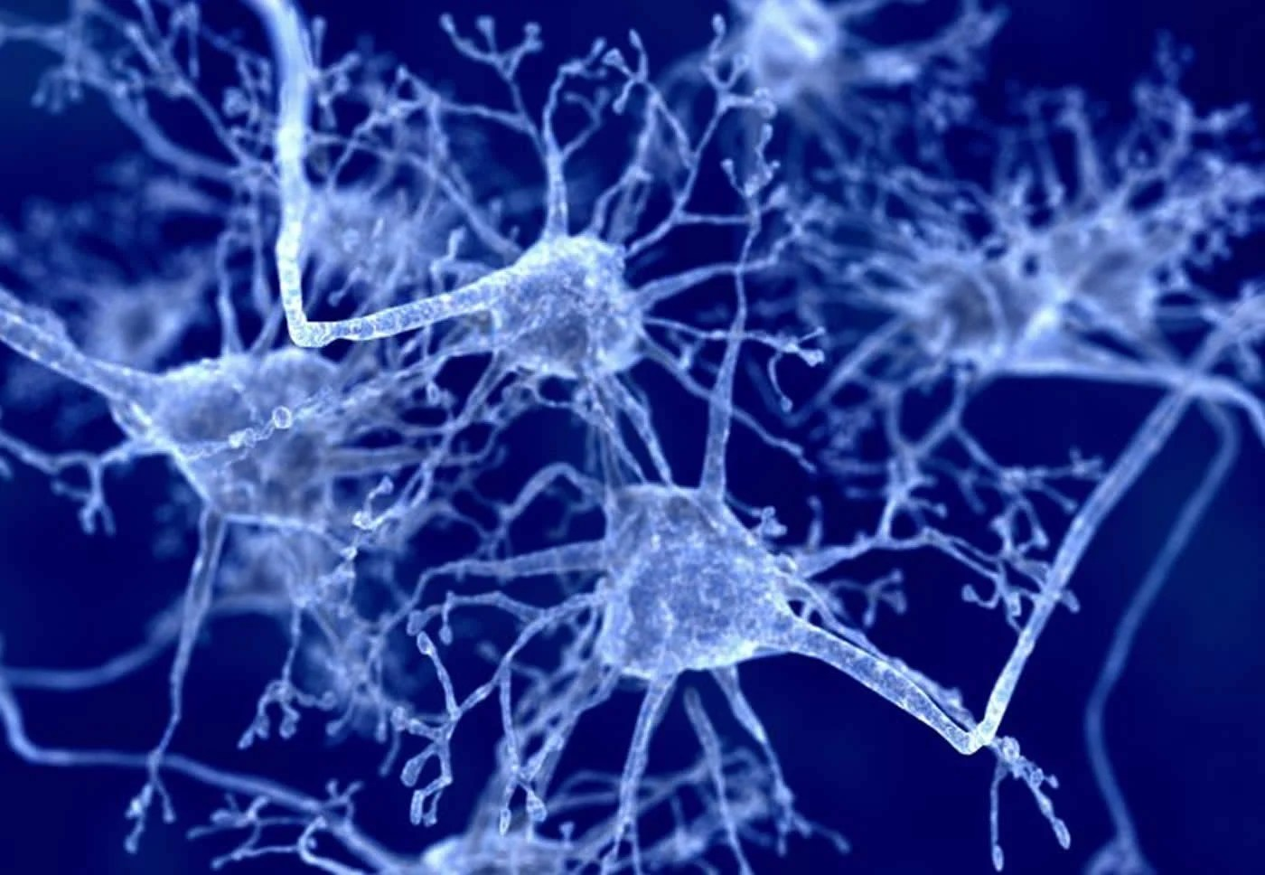 A New Way to Target Neurons Affected by Parkinson's Disease