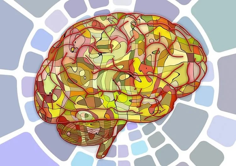 How the Brain Forms Original and Creative Ideas