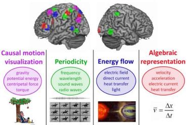 Image of a brain with different areas higlighted assosicated with scientific concepts.
