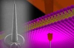 Diagram of the nanotower electrode.