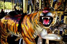 Image of a tiger on a merry go round.