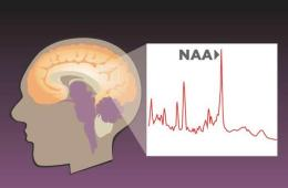 numeric reasoning archives neuroscience news