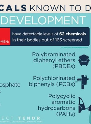A Host Of Common Chemicals Endanger >> Neuroscience News Brain Psychology Ai Neurology And Cognitive