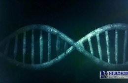 Image shows a DNA doble helix.