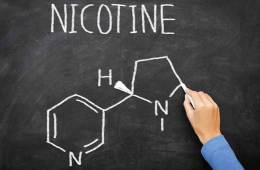 Image shows the molecular structure of nicotine drawn on a black board.