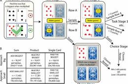 Image shows the experiment set up playing cards.