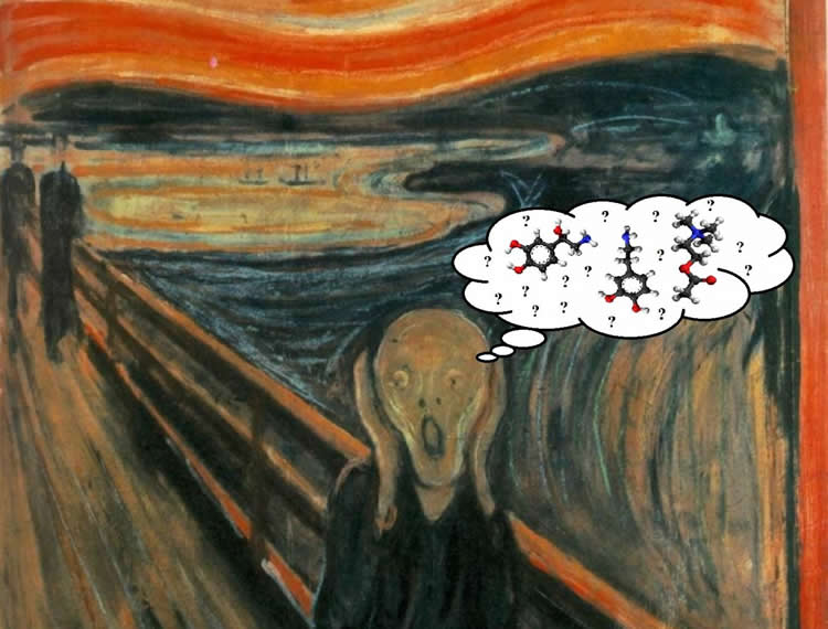 Image shows Munch's The Scream and chemical symbols.