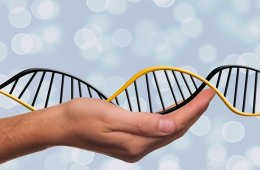 Image shows a hand holding a DNA double helix.