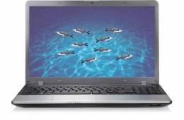 Image shows zebrafish on a computer.