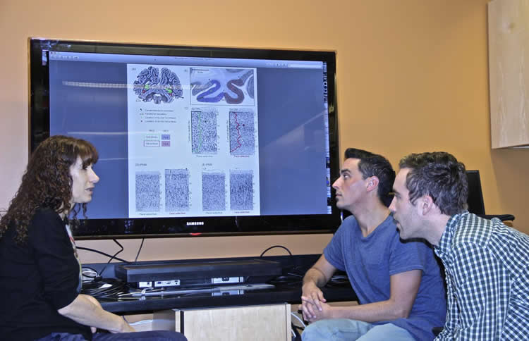 Image shows the researchers.