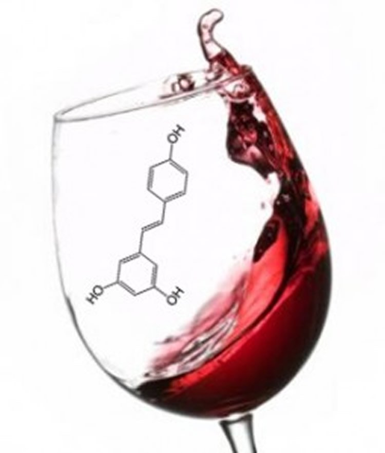 To Drink or Not To Drink: The Aging Brain and Alcohol