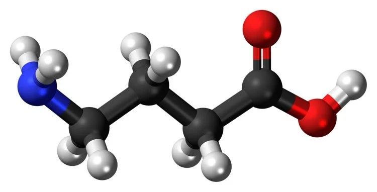 Image shows the chemical structure of GABA, a neurotransmitter implicated in schizophrenia.