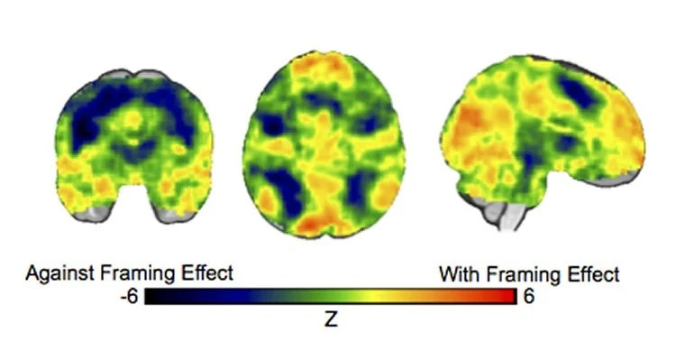 effect of colors on the brain and on emotions essay The electromagnetic energy of color, he said, interacts in some still unknown way with the pituitary and pineal glands and the hypothalamus, deep in the brain, these organs regulate the endocrine.