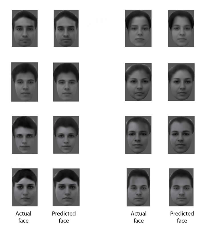 Image shows different faces.