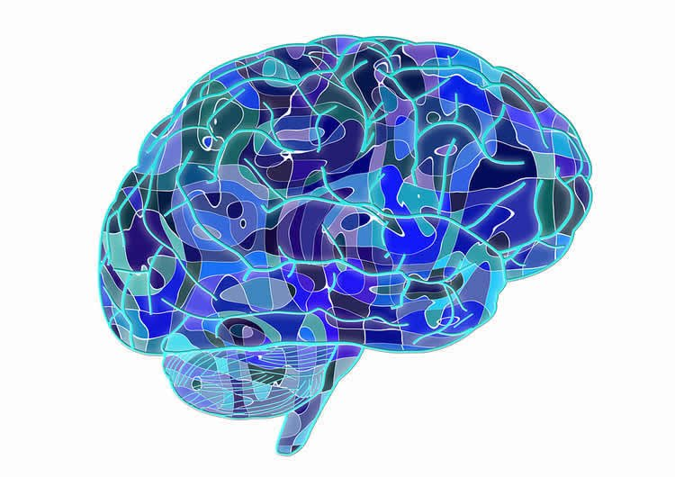 Image shows a blue brain.