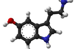 Image shows a stick and ball model of serotonin.