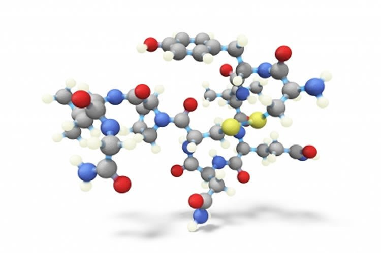 Image shows a stick and ball model of oxytocin.