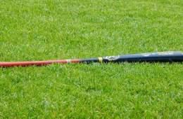 Image shows a baseball bat.