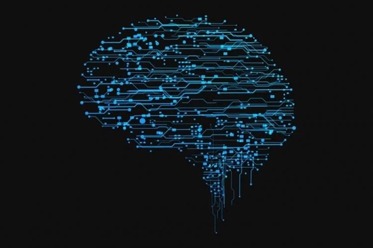 types of brain waves pdf