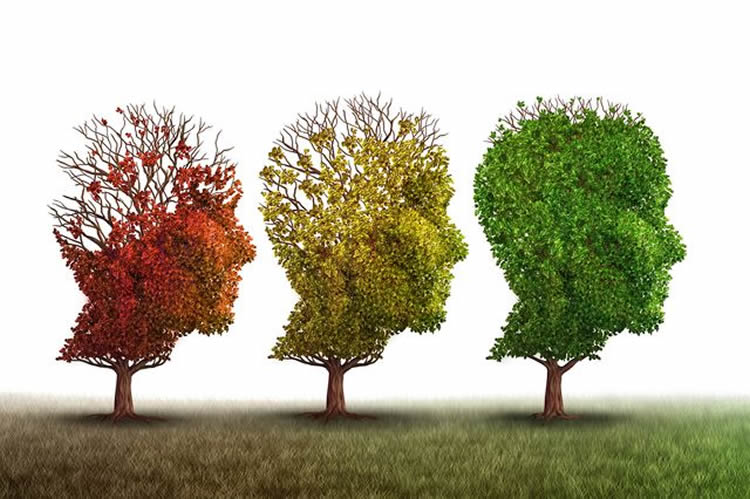 Image shows trees in the shape of heads.