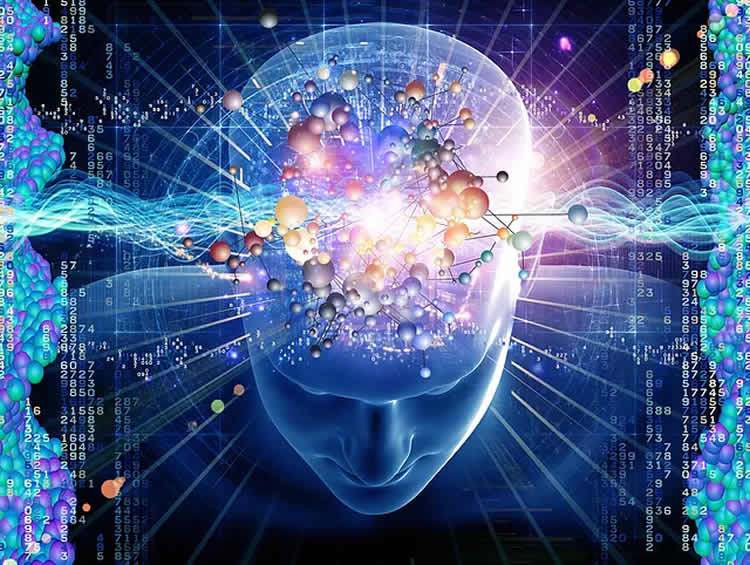 Does High Iq Increase Risk Of >> Hyper Brain Hyper Body The Trouble With High Iq Neuroscience News