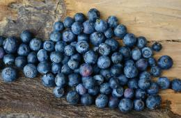 blueberries are shown