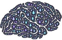 a brain made of tears