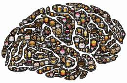 brain wih food