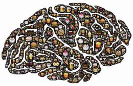 brain wih food