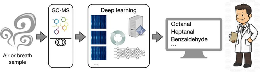 a diagram shows how the deep learning network works