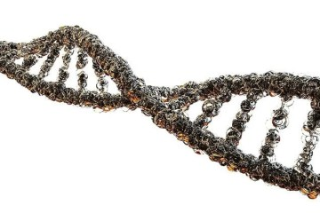 a dna strnd