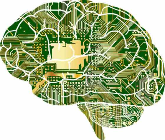 Machine Learning Uncovers Dementia Subtypes