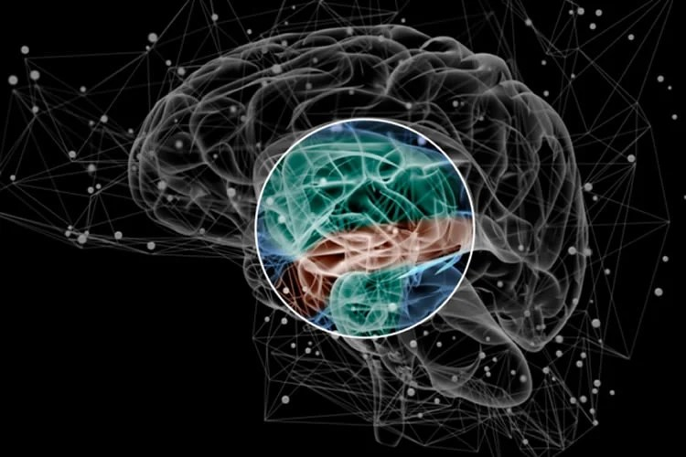 Clues To Autism Schizophrenia Emerge >> Brain Activity Pattern May Be Early Sign Of Schizophrenia
