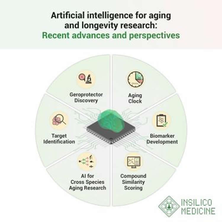 Artificial Intelligence Tracks Biological Age and Helps Rewind the Aging Clock