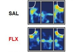 This shows a heatmap of pfc neurons