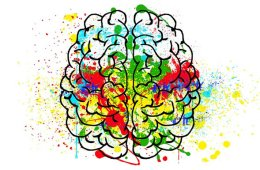 This shows a colorful brain