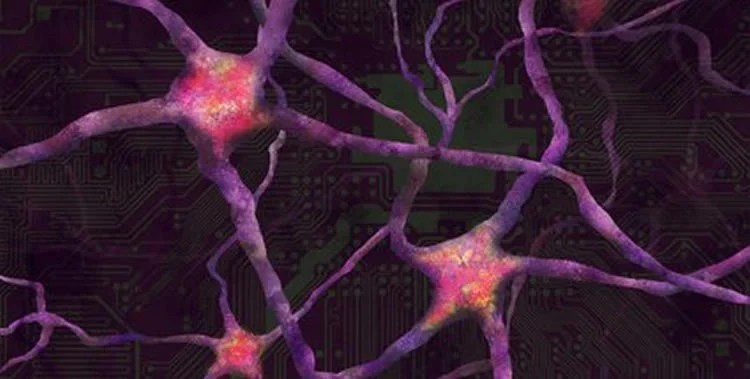 This shows neurons on a chipboard