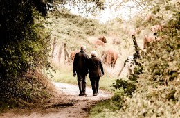 This shows an old couple walking down a country lane