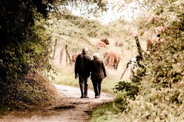 This shows an old couple walking