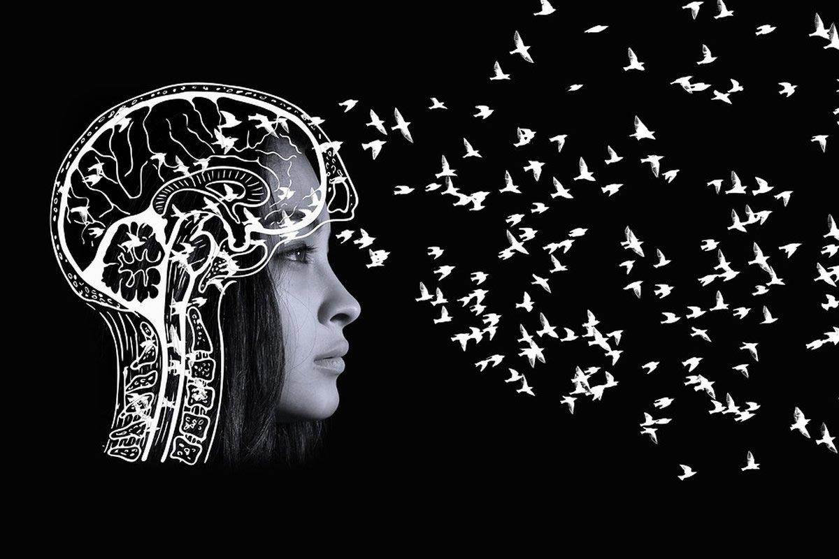 This shows a brain overlaid on a woman's head