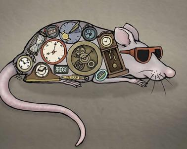 This shows a drawing of a mouse wearing sunglasses and covered in clocks