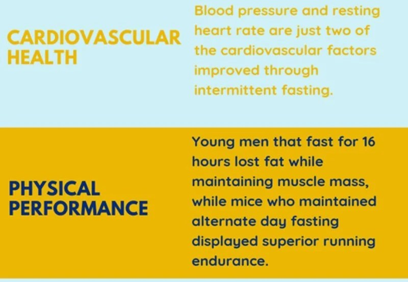 This infographic explains the benefits of intermittent fasting
