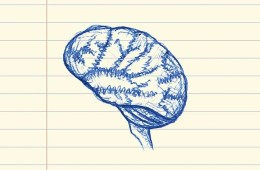 This is a pen drawing of a brain