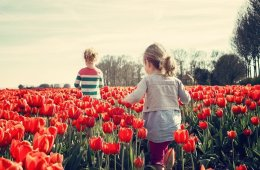 This shows two girls in a tulip field