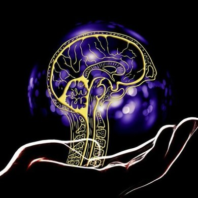 This shows a drawing of a brain and a hand
