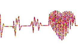 This shows a heart and blood pressure waves