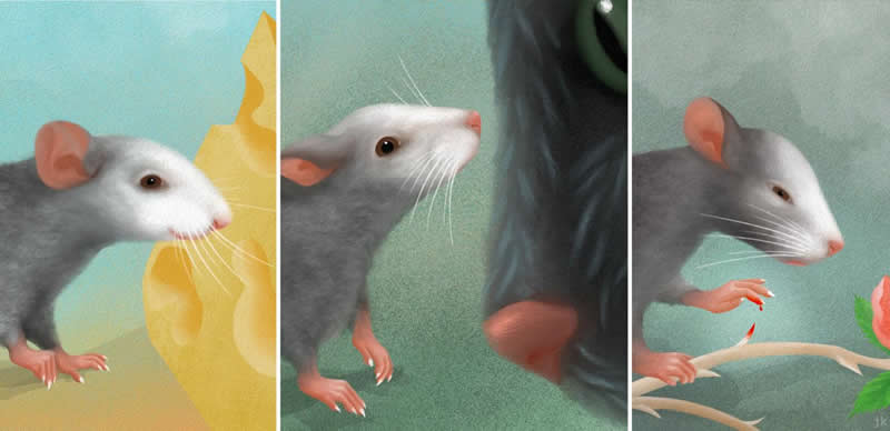Mice make different facial expressions based on emotion - Neuroscience News