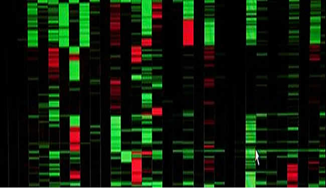 Genetic Markers - Hope for New Brain Tumor Treatments ...