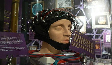 Brain Waves EEG